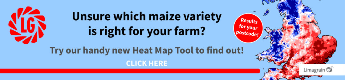 Maize Heat Map Banner
